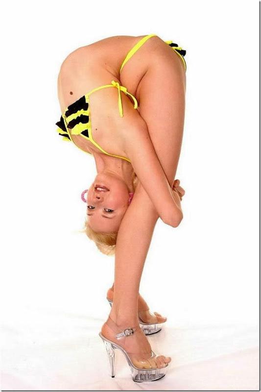 modelos flexiveis (15)