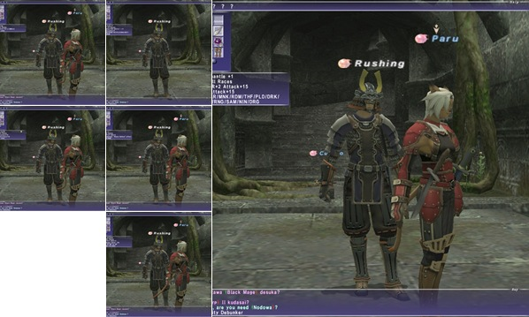 View FFXI Treasure hunting Gear and me
