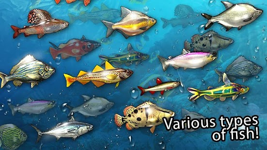 Game fishing river monster 2 apk for windows phone for River fishing games