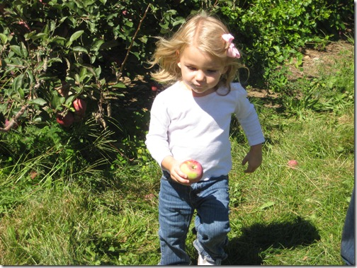 2010-09-11 911, agent, apple picking  3950