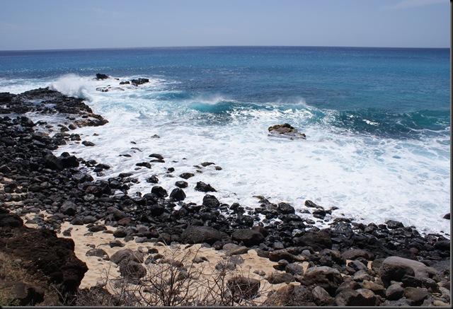 Kaena Beach 075