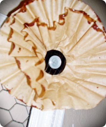 CAMERA PICS 08-28-2010 008