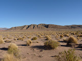Paysages typiques de l'altiplano