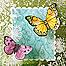 Acetate Butterflies Mother's Day Card Thumbnail