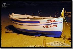 TossaP (26)