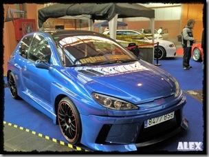 MotorShow2010 (5)