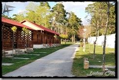 CampingArlanza (20)