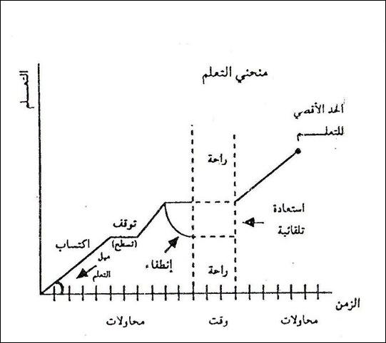 التعلم السلوك التنظيمي عمرو غنايم