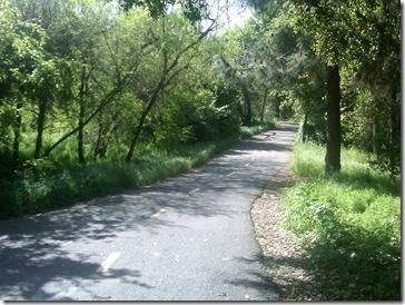 Stevens Creek 1