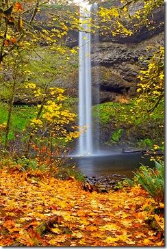 silver-falls-2
