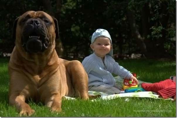 1 - niños con perros misimagenesdivertidas  (7)