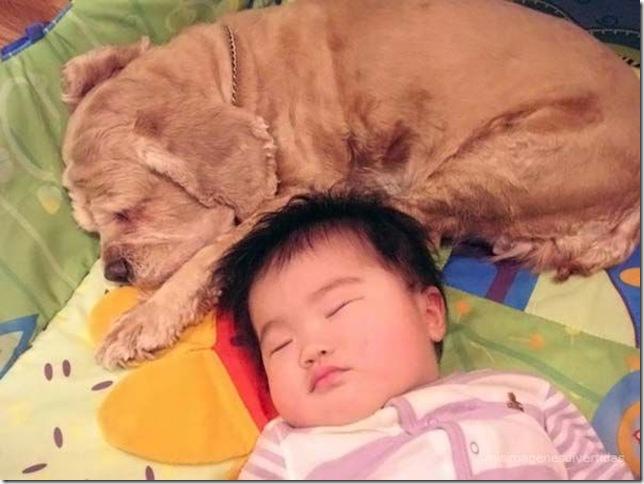 1 - niños con perros misimagenesdivertidas  (27)