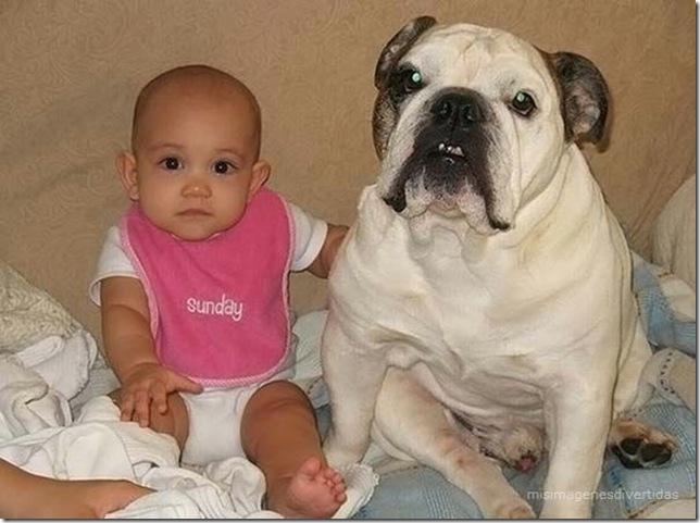 1 - niños con perros misimagenesdivertidas  (21)