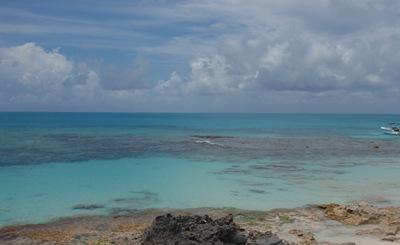 O chato de nadar aqui é que se mandamos uma biqueirada nos corais andamos envenenados durante três semanas! Há riscos que valem a pena correr...