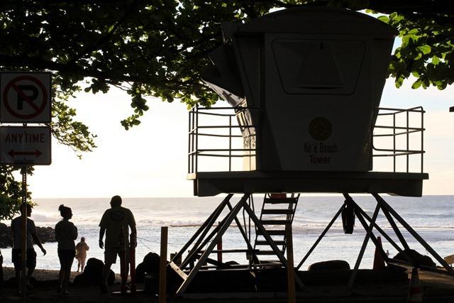 2011-02-28-Kauai-017web