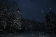 vinterland-1