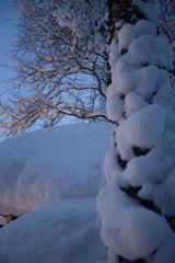 vinterland-7