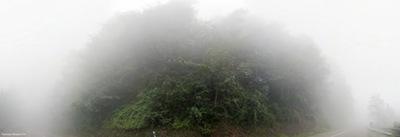 هوای مه آلود - شمال ایران