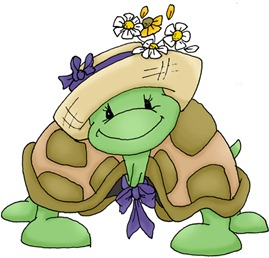 Thena the Turtle