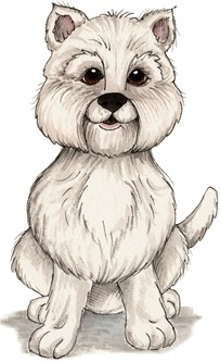 Puppy02