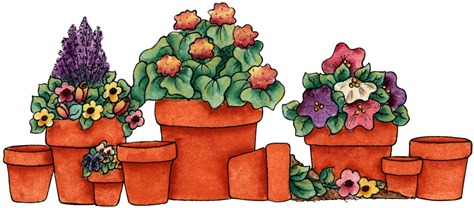 Potted Flowers01
