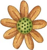 Fall Flower02-754949
