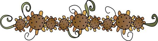BDR Sunflower