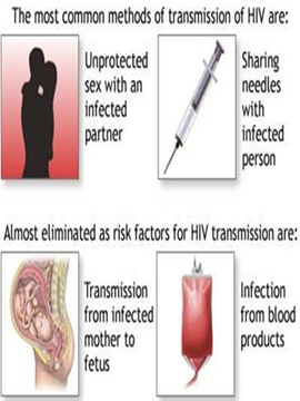 hiv-infection-transmission