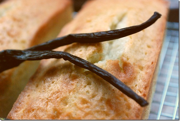vanillabean pound cake6