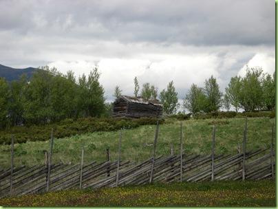 Tur til Murdalsetra i Skåbuferien juni 09 019