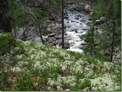 Tur til Vinsterfossen, Skåbu juni 09 027