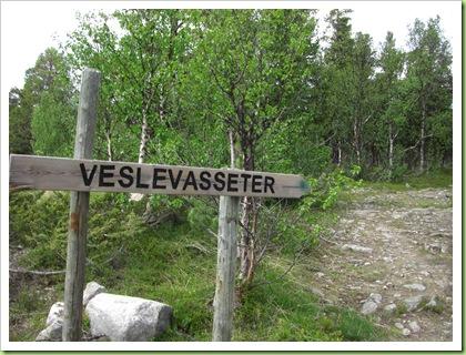 Tur til Veslevasseter og Sikkelsdalseter 030