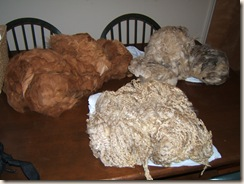 three fleeces