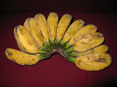 bananas from my best friend