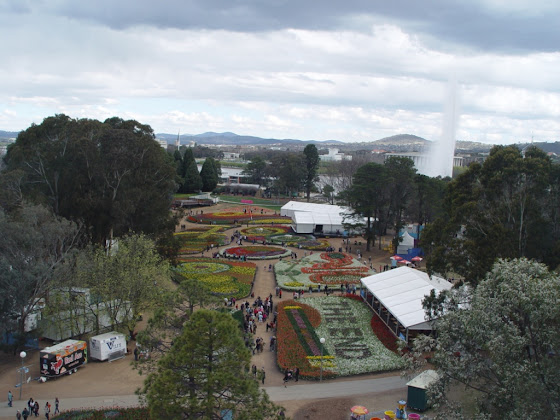 Floriade from the wheel