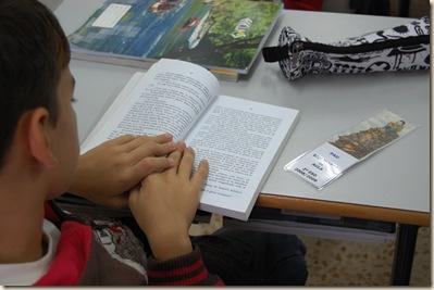 bibliotecas de aula (2)