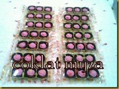 Coklat 5.3.2011 150