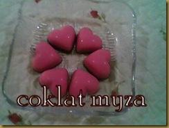 Coklat 5.3.2011 109