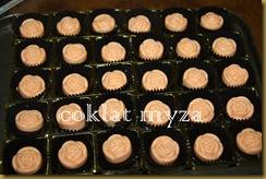 Coklat Myza 10.3.2011 009