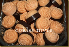 Coklat Myza 10.3.2011 008
