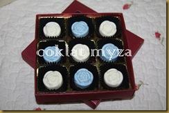 Coklat 16.3.2011 062