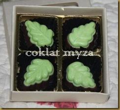 Coklat Myza 19.3.2011 004