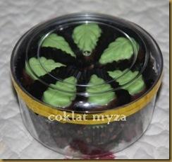 Coklat Myza 19.3.2011 006