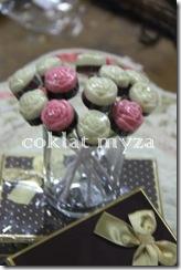 Coklat Myza 19.3.2011 051