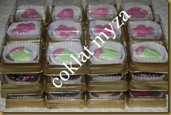 Coklat 30.3.2011 010