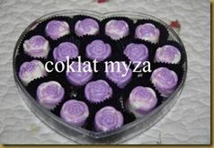 Coklat 1.4.2011 004