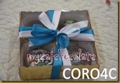 Coklat dan hiasan 9.4.2011 024