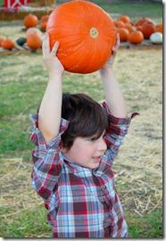 pumpkins10
