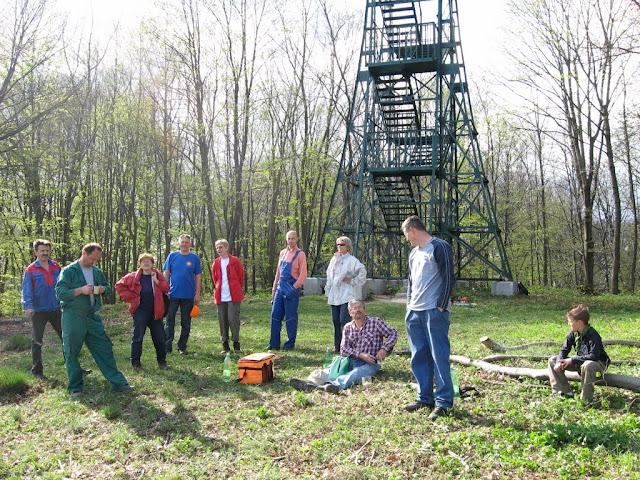 Rušenje stabala oko piramide
