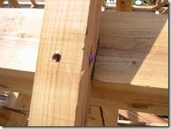 土壁の家 垂木釘